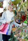 Το κορίτσι επιλέγει το γκι Στοκ φωτογραφία με δικαίωμα ελεύθερης χρήσης