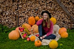 Το κορίτσι κάθεται έπειτα πλησίον για τις κολοκύθες Ημέρα των ευχαριστιών, αποκριές στοκ φωτογραφίες με δικαίωμα ελεύθερης χρήσης