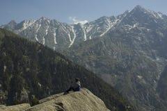 Το κορίτσι κάθεται σε έναν βράχο στα βουνά χιονιού στοκ φωτογραφία