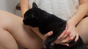 Το κορίτσι κάθεται στα σκαλοπάτια στο σπίτι μεταξύ των ποδιών της κρατά μια μαύρη γάτα και την κτυπά φιλμ μικρού μήκους