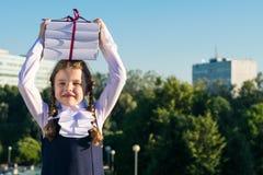 Το κορίτσι κρατά τα εγχειρίδια για το σχολείο στο κεφάλι μπροστά από το σχολικό υπόβαθρο στοκ εικόνα με δικαίωμα ελεύθερης χρήσης