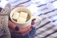 Το κορίτσι κρατά τον καφέ με marshmallow στοκ εικόνες με δικαίωμα ελεύθερης χρήσης