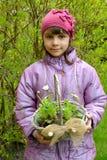 Το κορίτσι κρατά υπό εξέταση ένα καλάθι με το σπορόφυτο μαργαριτών Στοκ φωτογραφία με δικαίωμα ελεύθερης χρήσης