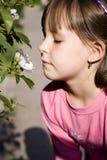 το κορίτσι λίγο αυξήθηκ&epsilon Στοκ φωτογραφία με δικαίωμα ελεύθερης χρήσης