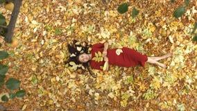 Το κορίτσι μεταξύ του κίτρινου βγάζει φύλλα απόθεμα βίντεο