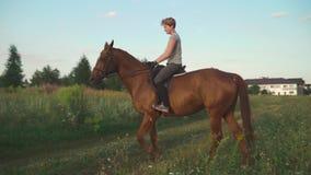 Το κορίτσι οδηγά ένα άλογο απόθεμα βίντεο