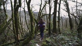 Το κορίτσι ομορφιάς περπατά στο δάσος παραμυθιού και πηδά πέρα από το μειωμένο δέντρο απόθεμα βίντεο