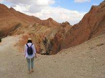 Το κορίτσι, πίσω άποψη, αντιμετωπίζει μη ορατό πηγαίνει στην όαση βουνών Chebika με τους φοίνικες στην αμμώδη έρημο Σαχάρας, μπλε στοκ φωτογραφία