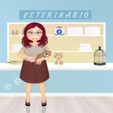 Το κορίτσι παίρνει τη γάτα στον κτηνίατρο Στοκ Φωτογραφία