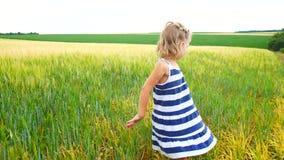 Το κορίτσι παιδιών πιάνει grasshoppers ή τις πεταλούδες σε έναν τομέα φιλμ μικρού μήκους
