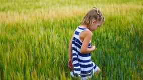 Το κορίτσι παιδιών πιάνει grasshoppers ή τις πεταλούδες σε έναν τομέα απόθεμα βίντεο