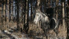 Το κορίτσι περνά από το δάσος απόθεμα βίντεο