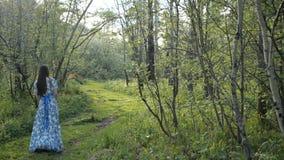 Το κορίτσι περπατά κατά μήκος της πορείας στο δάσος απόθεμα βίντεο