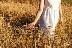 Το κορίτσι περπατά κατά μήκος του τομέα σίτου, σχετικά με τα αυτιά με το χέρι Στοκ φωτογραφία με δικαίωμα ελεύθερης χρήσης