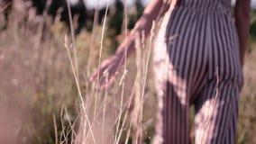Το κορίτσι περπατά τον τομέα Σκιαγραφία ενός κοριτσιού φιλμ μικρού μήκους
