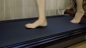 Το κορίτσι πηγαίνει χωρίς παπούτσια treadmill Κινηματογράφηση σε πρώτο πλάνο απόθεμα βίντεο