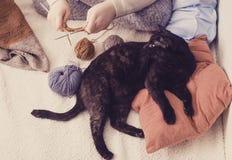 Το κορίτσι πλέκει και η μαύρη γάτα βρίσκεται στο μαξιλάρι Στοκ Εικόνες