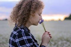 Το κορίτσι ρουθουνίζει μια μικρή ανθοδέσμη των cornflowers στα πλαίσια του ουρανού βραδιού και ενός τομέα λουλουδιών Στοκ Φωτογραφίες