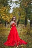 Το κορίτσι σε ένα κόκκινο φόρεμα 1291 Στοκ φωτογραφία με δικαίωμα ελεύθερης χρήσης