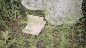 Το κορίτσι σε ένα μακρύ διαφανές άσπρο εκλεκτής ποιότητας φόρεμα με τα floral σχέδια κάθεται στα ξύλα ένα κενό βιβλίο πέφτει ξαφν φιλμ μικρού μήκους