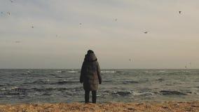 Το κορίτσι σε ένα παλτό και ένα καπέλο στέκεται στην ακτή ανάμεσα πετώντας seagulls απόθεμα βίντεο