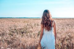 Το κορίτσι στον τομέα θερινού σίτου, άσπρο φόρεμα, μαυρισμένο δέρμα, πηγαίνει στον τομέα, ευτυχή στις διακοπές στο καθαρό αέρα Μι Στοκ εικόνες με δικαίωμα ελεύθερης χρήσης