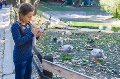 Το κορίτσι στο ζωολογικό κήπο που εξετάζει τη κάμερα Στοκ φωτογραφίες με δικαίωμα ελεύθερης χρήσης