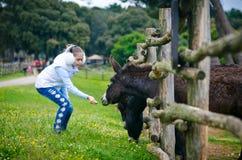 Το κορίτσι στο ζωολογικό κήπο Στοκ φωτογραφία με δικαίωμα ελεύθερης χρήσης