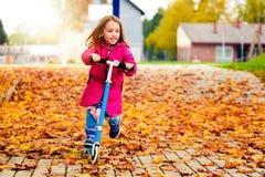 Το κορίτσι στο ρόδινο παλτό οδηγά το μηχανικό δίκυκλο στα φύλλα σφενδάμου Στοκ Εικόνες