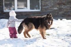 Το κορίτσι συναντά ένα σκυλί στο χειμερινό περίπατο Στοκ Εικόνα