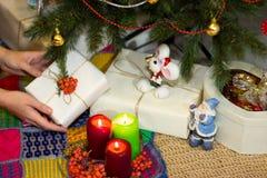 Το κορίτσι συσκευάζει τα δώρα κοντά σε ένα χριστουγεννιάτικο δέντρο Στοκ Εικόνα