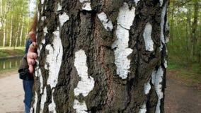 Το κορίτσι τρέχει το χέρι της κατά μήκος του κορμού δέντρων φιλμ μικρού μήκους