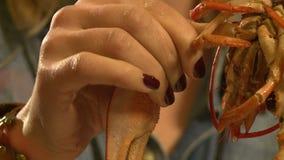 Το κορίτσι τρώει στον καρκίνο απόθεμα βίντεο