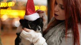 Το κορίτσι φορά ένα καπέλο Santa σε ένα χαριτωμένο σκυλί έννοια Χριστουγέννων εύθ&upsilo καλή διάθεση Αγορά Χριστουγέννων απόθεμα βίντεο