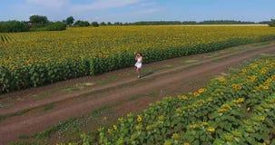 Το κορίτσι Brunette με την πανέμορφη σγουρή τρίχα στα άσπρα σύντομα sundress περπατά κατά μήκος του αγροτικού δρόμου μεταξύ δύο ε φιλμ μικρού μήκους