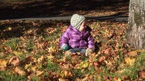 Το κοριτσάκι κάθεται μεταξύ των ξηρών φύλλων φθινοπώρου στην ηλιόλουστη ημέρα κήπων 4K απόθεμα βίντεο