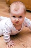 το κοριτσάκι κοιτάζει ε&p Στοκ Φωτογραφία