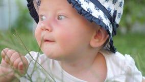 Το κοριτσάκι με τα μπλε μάτια αγγίζει την πράσινη χλόη κατά τη διάρκεια του ηλιόλουστου υποβάθρου θερινής ημέρας απόθεμα βίντεο
