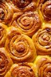 Το κουλούρι ζύμης κανέλας κολοκύθας κυλά παραδοσιακά δανικά έψησε το vegan γλυκό κέικ φθινοπώρου Στοκ Φωτογραφία
