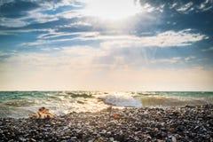 Το κοχύλι θάλασσας βρίσκεται σε μια παραλία χαλικιών στην ακτή στο υπόβαθρο μιας οργιμένος θάλασσας μια καυτή, ηλιόλουστη ημέρα Στοκ Εικόνες