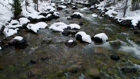 Το κούτσουρο προεξέχει σε έναν παγωμένο κρύο ποταμό το χειμώνα απόθεμα βίντεο
