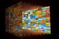 Το κολάζ πολλών φωτογραφιών φύσης Στοκ Φωτογραφία