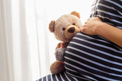 Το κράτημα εγκύων γυναικών teddy αντέχει το παιχνίδι Στοκ εικόνα με δικαίωμα ελεύθερης χρήσης