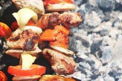 Το κρέας έψησε τη φυτική μακροεντολή τέφρας στη σχάρα Στοκ φωτογραφία με δικαίωμα ελεύθερης χρήσης