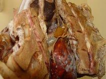 Το κρέας κρεμιέται για την ξήρανση στοκ φωτογραφίες