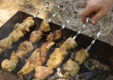 Το κρέας στους άνθρακες Στοκ εικόνα με δικαίωμα ελεύθερης χρήσης