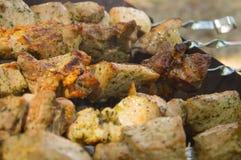Το κρέας στους άνθρακες Στοκ φωτογραφία με δικαίωμα ελεύθερης χρήσης