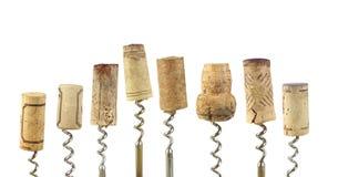 Το κρασί βουλώνει Στοκ εικόνα με δικαίωμα ελεύθερης χρήσης