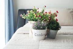 Το κρεβάτι με το λουλούδι και νάνο δέντρο στο δοχείο λουλουδιών στοκ φωτογραφίες με δικαίωμα ελεύθερης χρήσης