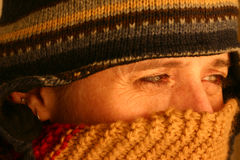 το κρύο καταριέται Στοκ Εικόνες